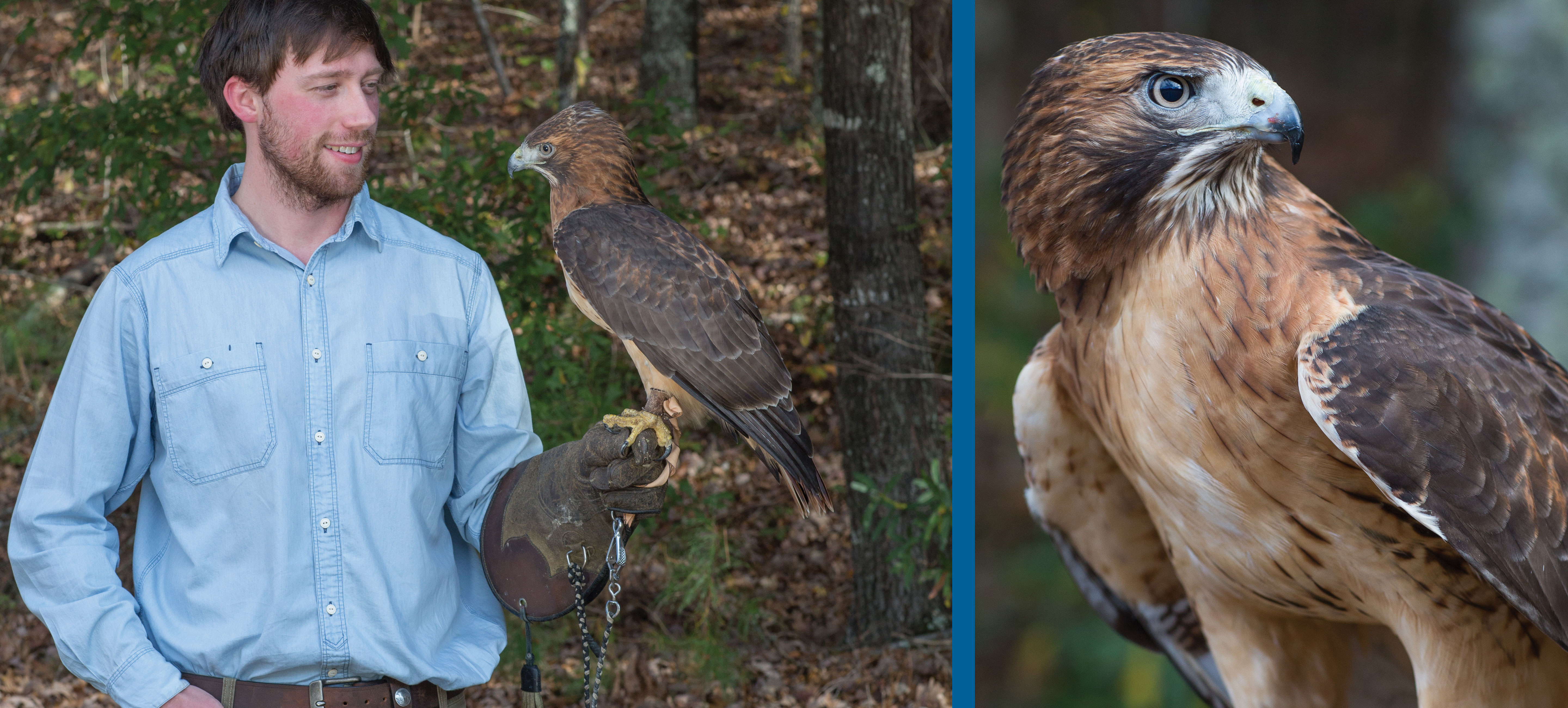 student with hawk
